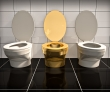 $5 Million Gold Toilet Vanishes