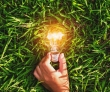 Impact Investing Remains Strong Despite COVID-19 Market Downturn