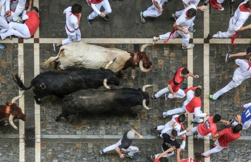 The Stock Market Bulls Still Have Room To Run
