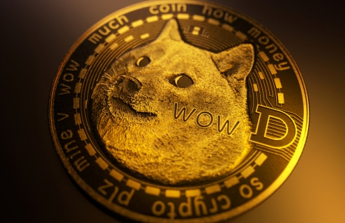 Has Dogecoin Become The New GameStop Pump-and-Dump?