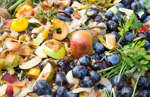 The World Is Facing A $1 Trillion Food Waste Crisis
